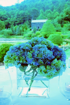 Blue Hydrangea Barn Background